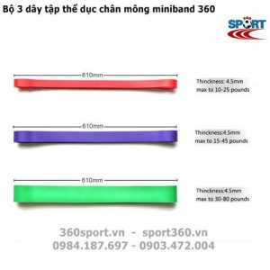 Bộ 3 dây tập mông chân miniband 360