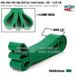 Dây tập thể lực power band 50 – 125 LB