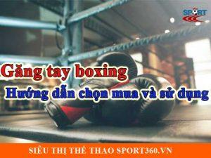 Găng tay boxing - Hướng dẫn chọn mua và sử dụng