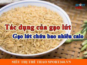 Tác dụng của gạo lứt là gì và 100g gạo lứt chứa bao nhiêu calo