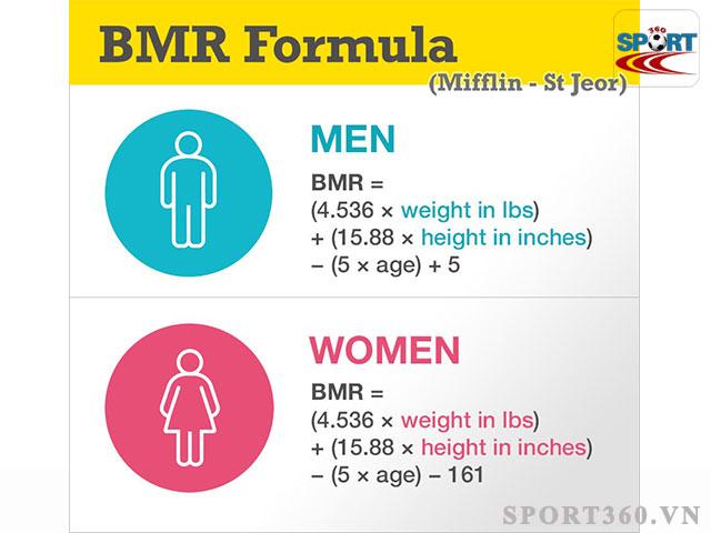 Tính BMR theo công thức Mifflin-St Jeor