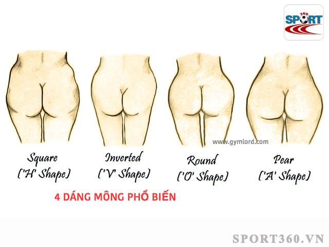 các dáng mông phổ biến