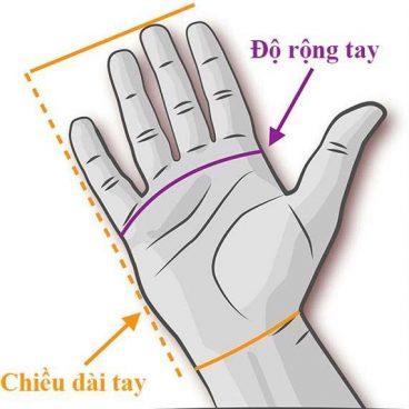cách đo độ rộng bàn tay chọn size găng tay tập gym
