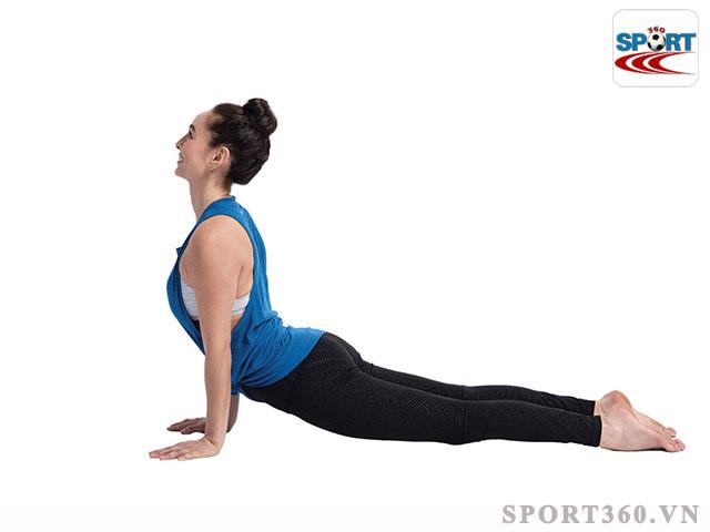 bài yoga Upward-Facing Dog