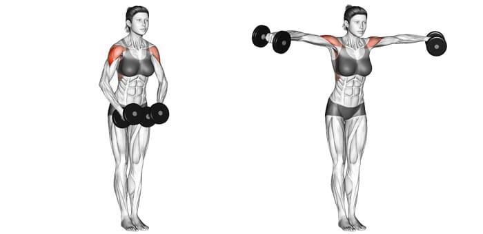 Leteral giúp tăng kích thước vòng 1 và làm chắc khỏe cơ tay