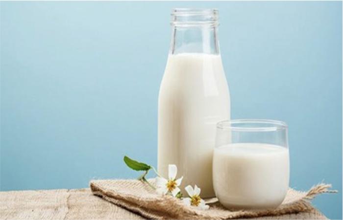 Sữa tươi có nhiều tác dụng đối với GYMer